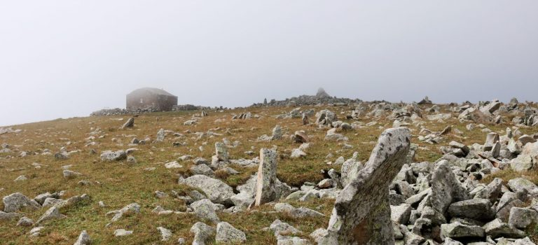 დალისმთის ციკლოპური კომპლექსი და დარბაზული ეკლესია