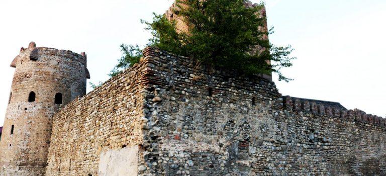 ქვემო ჭალის ამილახვართა მთავარი ციხე-დარბაზის კომპლექსი